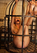 Luciana Suspended Cage - Picture 4